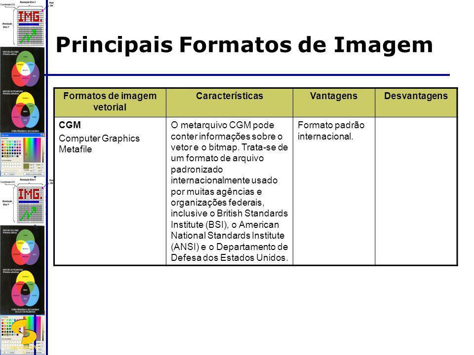 DSC/CEEI/UFC G Formatos de imagem vetorial CaracterísticasVantagensDesvantagens CGM Computer Graphics Metafile O metarquivo CGM pode conter informaçõe