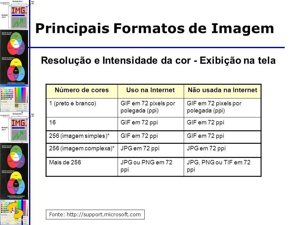 DSC/CEEI/UFC G Resolução e Intensidade da cor - Exibição na tela Número de coresUso na InternetNão usada na Internet 1 (preto e branco)GIF em 72 pixel