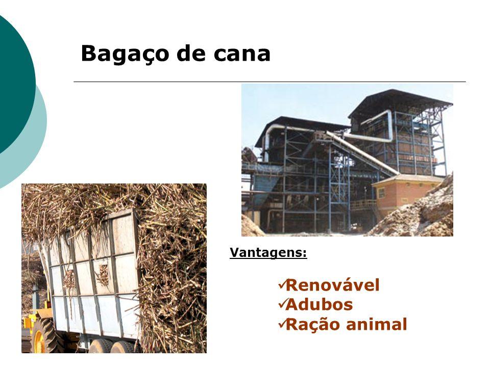 Bagaço de cana Renovável Adubos Ração animal Vantagens: