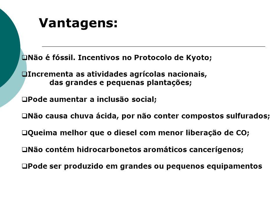 Vantagens: Não é fóssil. Incentivos no Protocolo de Kyoto; Incrementa as atividades agrícolas nacionais, das grandes e pequenas plantações; Pode aumen