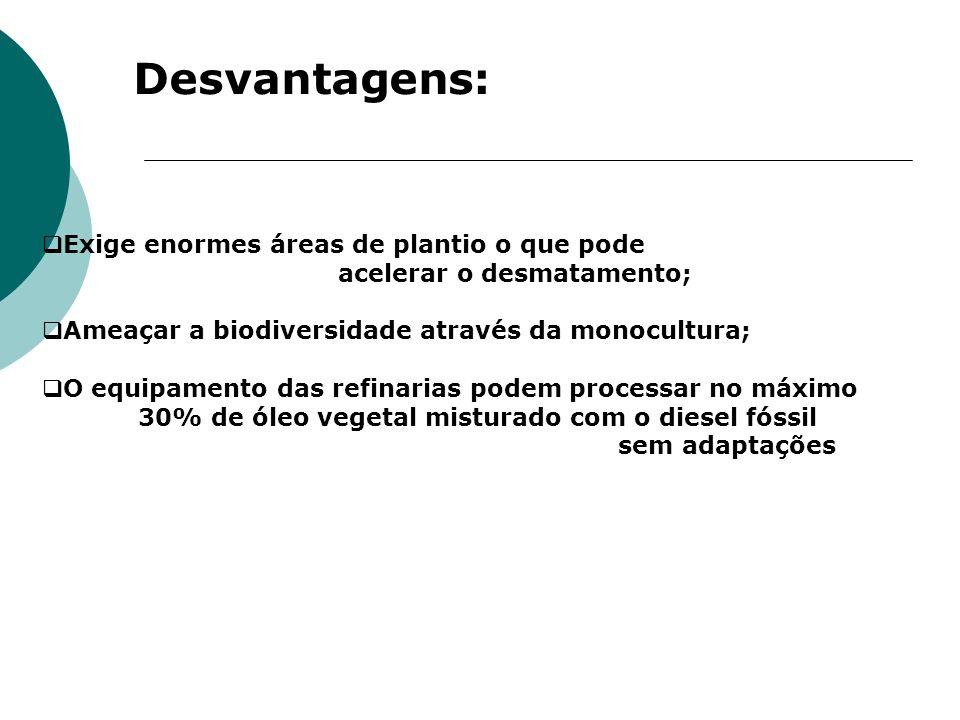 Desvantagens: Exige enormes áreas de plantio o que pode acelerar o desmatamento; Ameaçar a biodiversidade através da monocultura; O equipamento das re