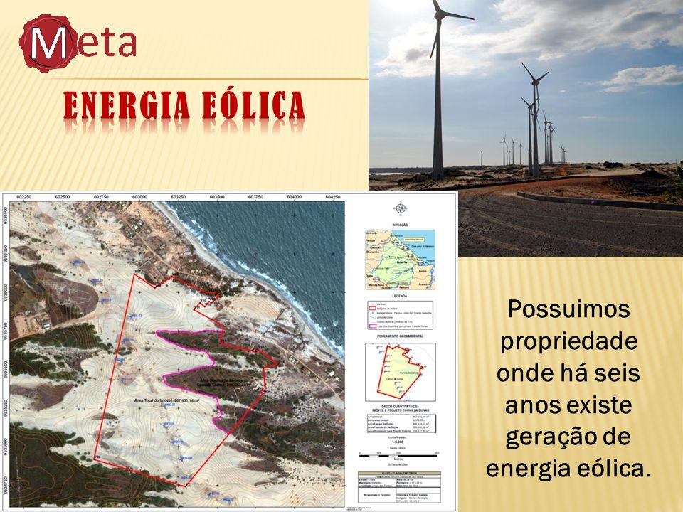 Possuimos propriedade onde há seis anos existe geração de energia eólica.