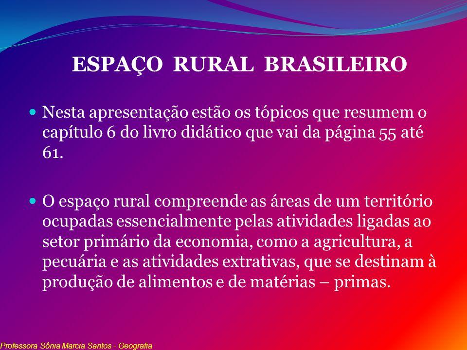 ESPAÇO RURAL BRASILEIRO Nesta apresentação estão os tópicos que resumem o capítulo 6 do livro didático que vai da página 55 até 61. O espaço rural com