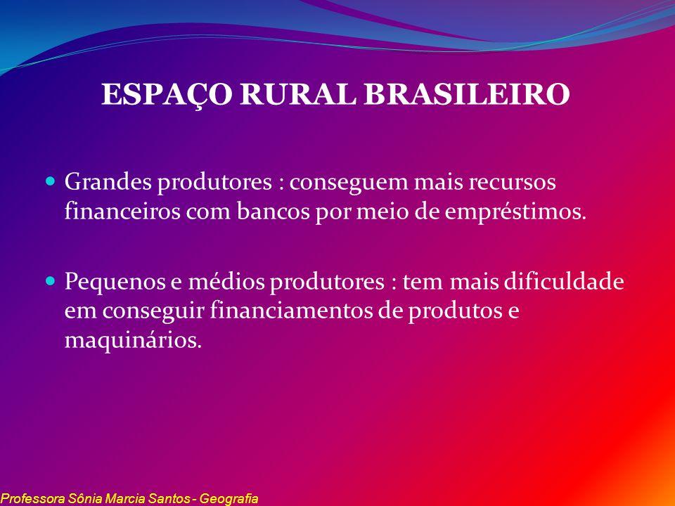 ESPAÇO RURAL BRASILEIRO Grandes produtores : conseguem mais recursos financeiros com bancos por meio de empréstimos. Pequenos e médios produtores : te