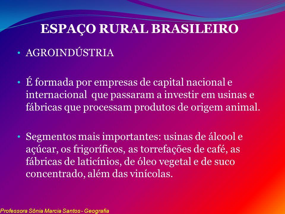 ESPAÇO RURAL BRASILEIRO AGROINDÚSTRIA É formada por empresas de capital nacional e internacional que passaram a investir em usinas e fábricas que proc