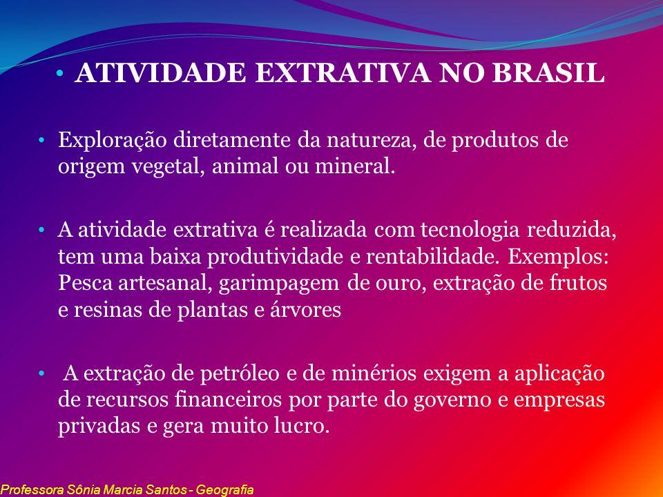 ATIVIDADE EXTRATIVA NO BRASIL Exploração diretamente da natureza, de produtos de origem vegetal, animal ou mineral. A atividade extrativa é realizada