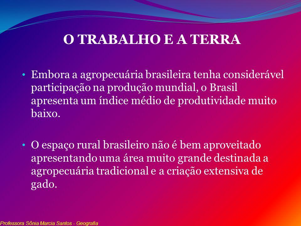O TRABALHO E A TERRA Embora a agropecuária brasileira tenha considerável participação na produção mundial, o Brasil apresenta um índice médio de produ