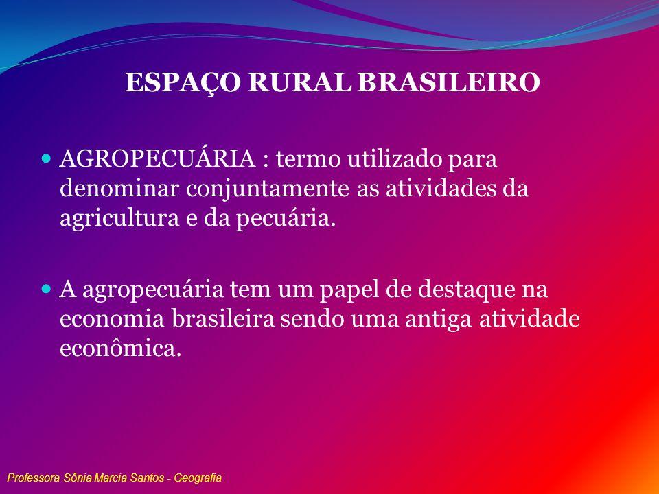 ESPAÇO RURAL BRASILEIRO AGROPECUÁRIA : termo utilizado para denominar conjuntamente as atividades da agricultura e da pecuária. A agropecuária tem um