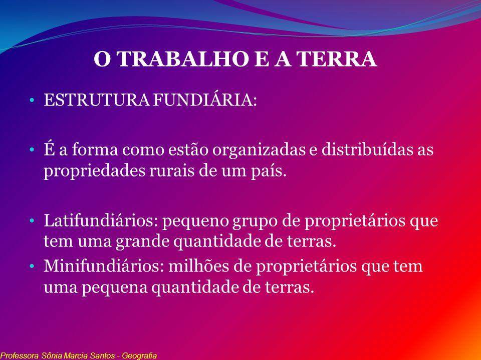 O TRABALHO E A TERRA ESTRUTURA FUNDIÁRIA: É a forma como estão organizadas e distribuídas as propriedades rurais de um país. Latifundiários: pequeno g