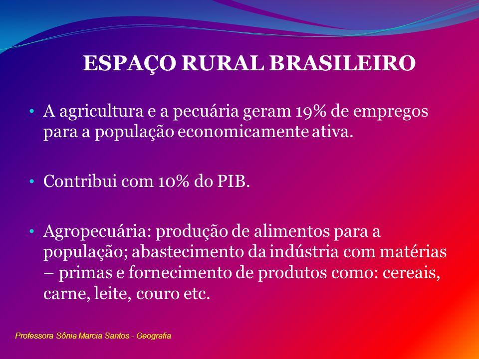 ESPAÇO RURAL BRASILEIRO A agricultura e a pecuária geram 19% de empregos para a população economicamente ativa. Contribui com 10% do PIB. Agropecuária