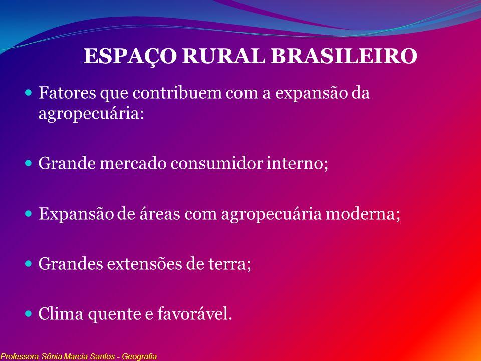 ESPAÇO RURAL BRASILEIRO Fatores que contribuem com a expansão da agropecuária: Grande mercado consumidor interno; Expansão de áreas com agropecuária m