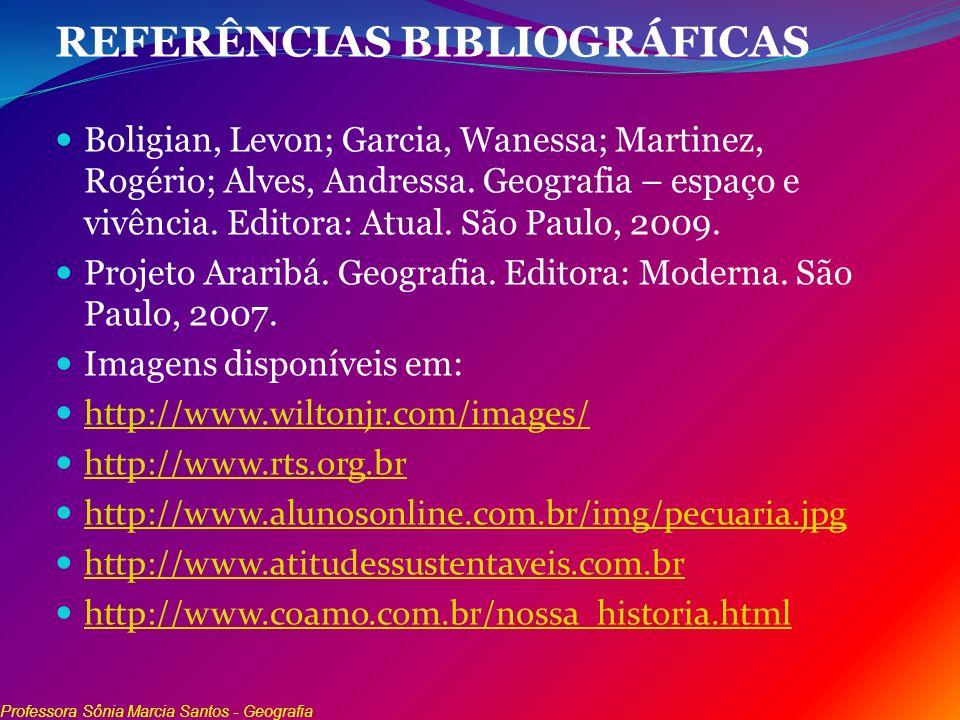REFERÊNCIAS BIBLIOGRÁFICAS Boligian, Levon; Garcia, Wanessa; Martinez, Rogério; Alves, Andressa. Geografia – espaço e vivência. Editora: Atual. São Pa