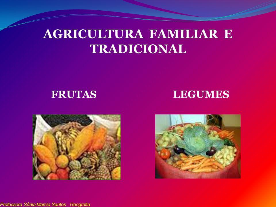 AGRICULTURA FAMILIAR E TRADICIONAL FRUTAS LEGUMES Professora Sônia Marcia Santos - Geografia
