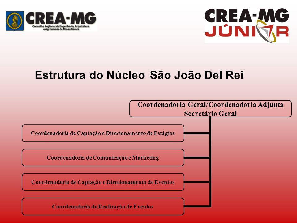 Estrutura do Núcleo São João Del Rei Coordenadoria Geral/Coordenadoria Adjunta Secretário Geral Coordenadoria de Captação e Direcionamento de Estágios