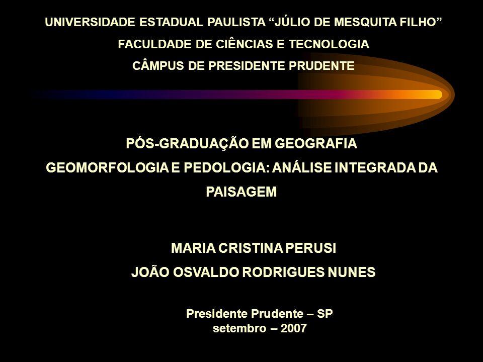 UNIVERSIDADE ESTADUAL PAULISTA JÚLIO DE MESQUITA FILHO FACULDADE DE CIÊNCIAS E TECNOLOGIA CÂMPUS DE PRESIDENTE PRUDENTE PÓS-GRADUAÇÃO EM GEOGRAFIA GEO