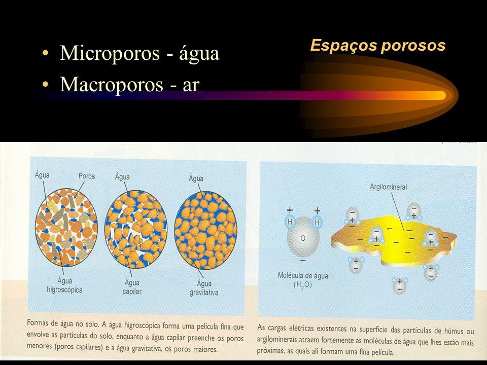 Espaços porosos Microporos - água Macroporos - ar