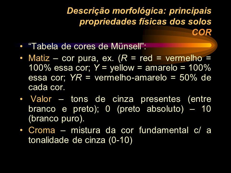Descrição morfológica: principais propriedades físicas dos solos COR Tabela de cores de Münsell: Matiz – cor pura, ex. (R = red = vermelho = 100% essa
