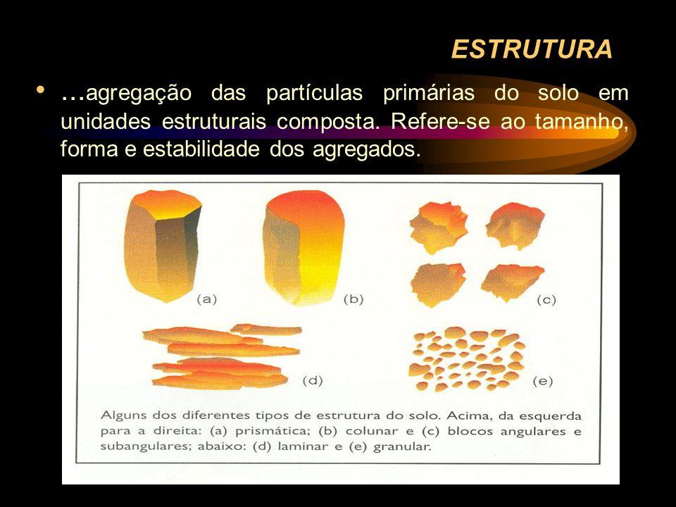 ESTRUTURA... agregação das partículas primárias do solo em unidades estruturais composta. Refere-se ao tamanho, forma e estabilidade dos agregados.