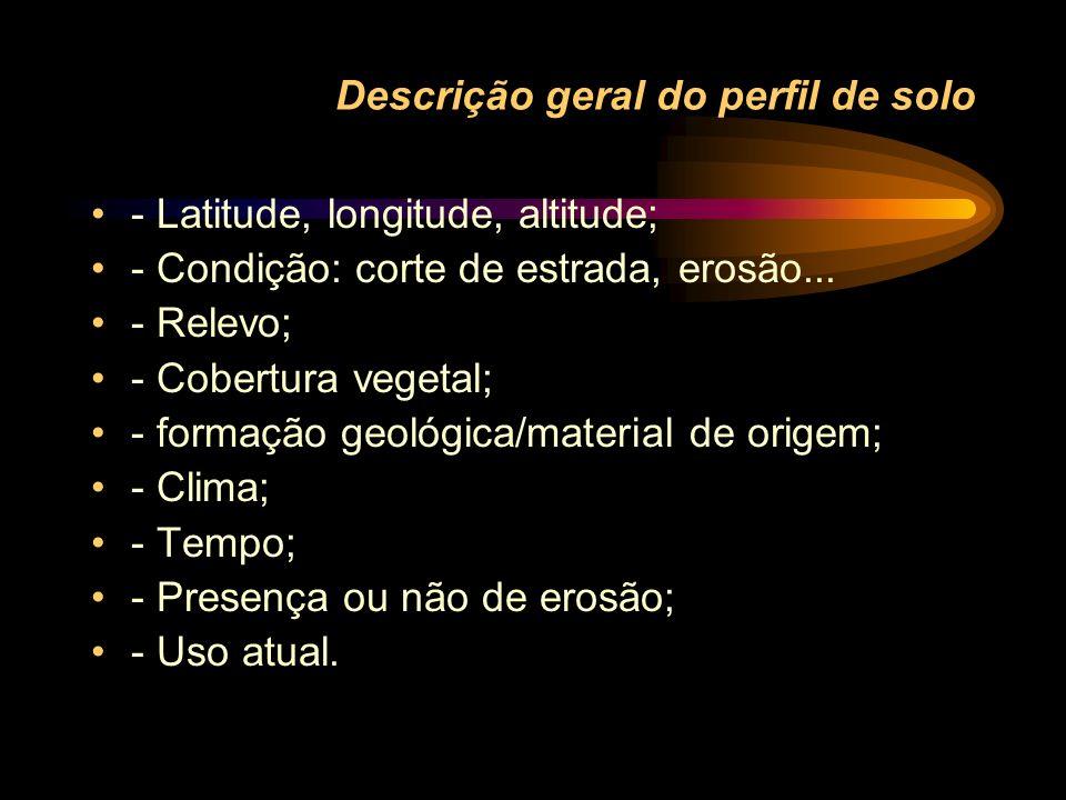 Descrição geral do perfil de solo - Latitude, longitude, altitude; - Condição: corte de estrada, erosão... - Relevo; - Cobertura vegetal; - formação g
