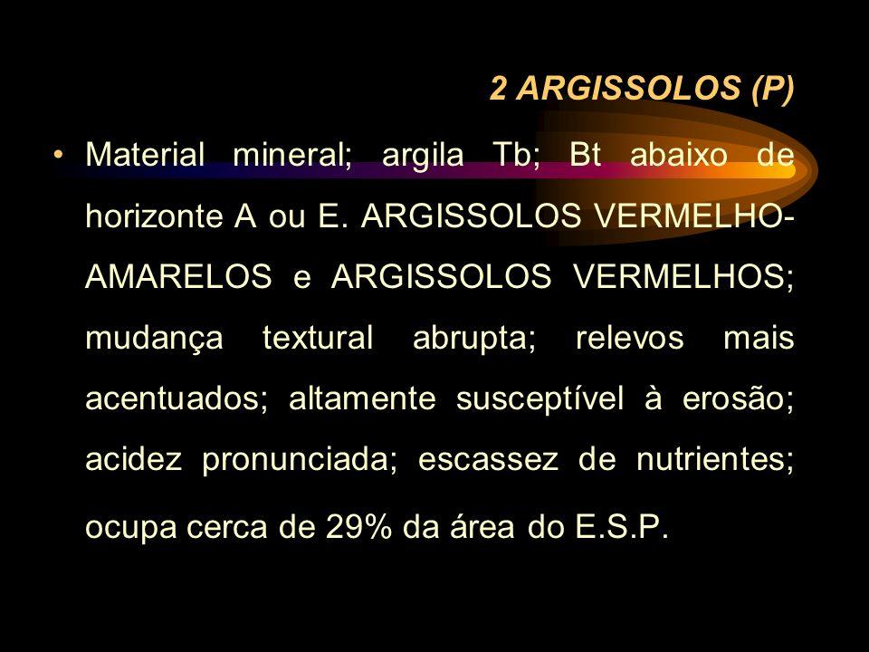 2 ARGISSOLOS (P) Material mineral; argila Tb; Bt abaixo de horizonte A ou E. ARGISSOLOS VERMELHO- AMARELOS e ARGISSOLOS VERMELHOS; mudança textural ab