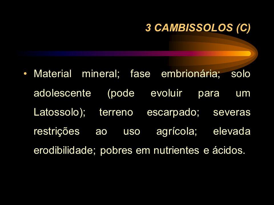 3 CAMBISSOLOS (C) Material mineral; fase embrionária; solo adolescente (pode evoluir para um Latossolo); terreno escarpado; severas restrições ao uso