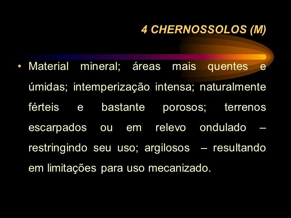 4 CHERNOSSOLOS (M) Material mineral; áreas mais quentes e úmidas; intemperização intensa; naturalmente férteis e bastante porosos; terrenos escarpados