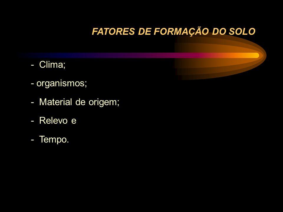 FATORES DE FORMAÇÃO DO SOLO - Clima; - organismos; - Material de origem; - Relevo e - Tempo.