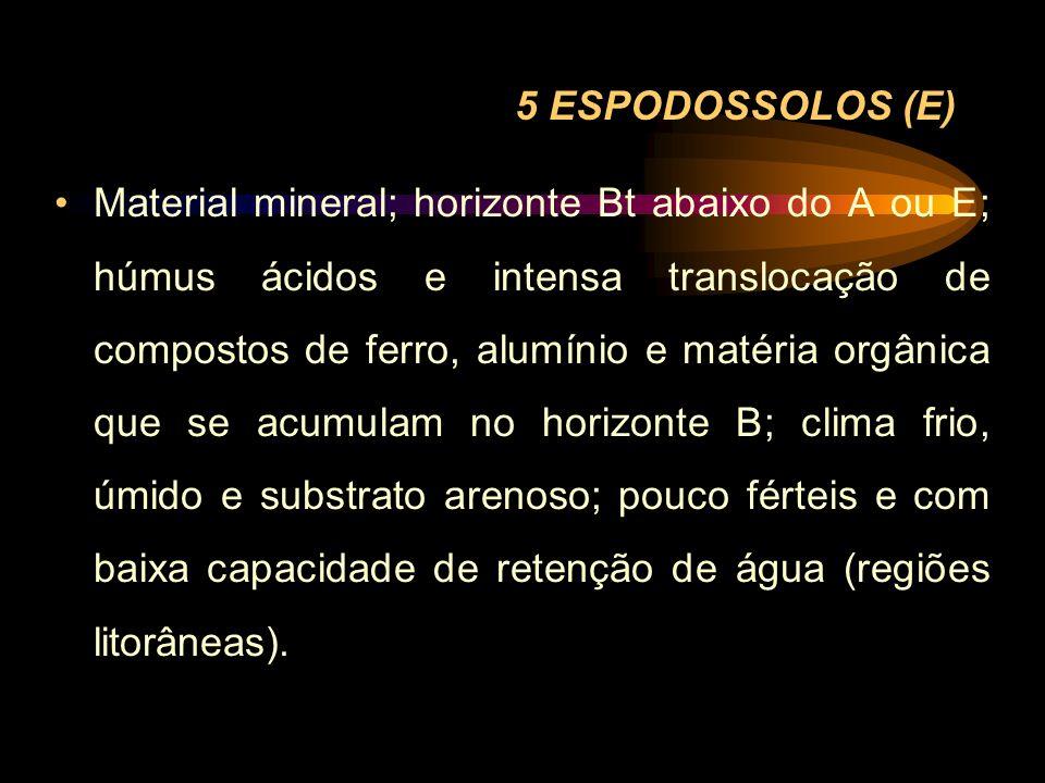 5 ESPODOSSOLOS (E) Material mineral; horizonte Bt abaixo do A ou E; húmus ácidos e intensa translocação de compostos de ferro, alumínio e matéria orgâ