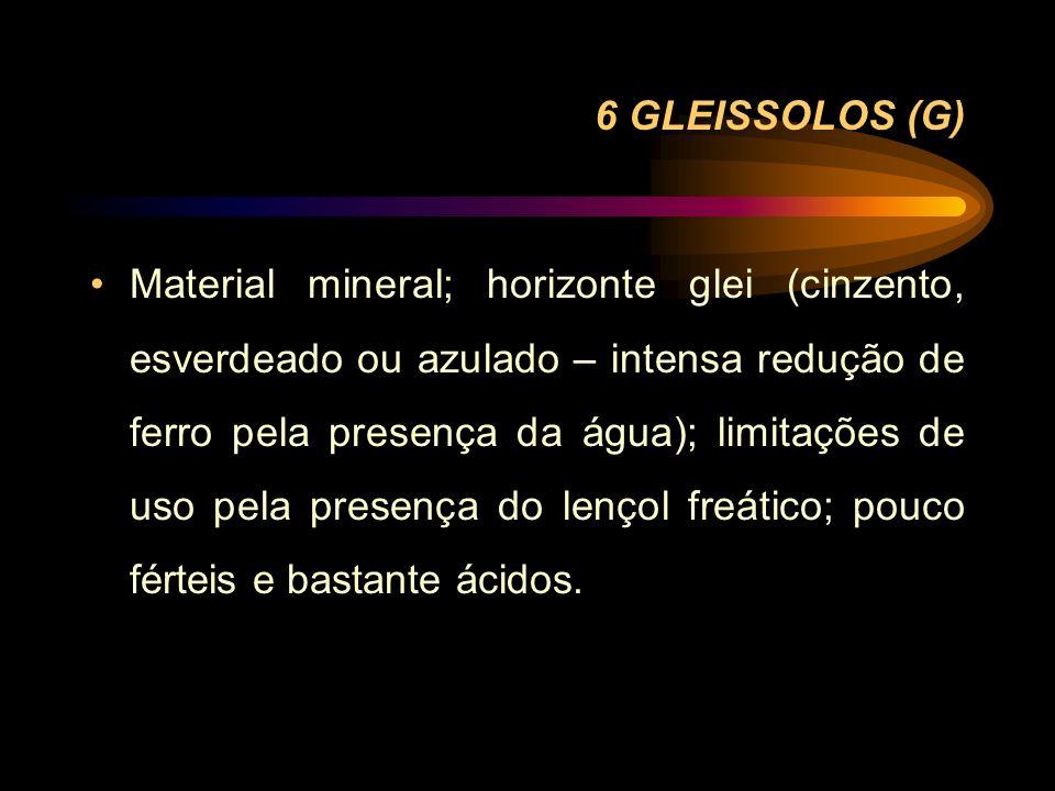 6 GLEISSOLOS (G) Material mineral; horizonte glei (cinzento, esverdeado ou azulado – intensa redução de ferro pela presença da água); limitações de us