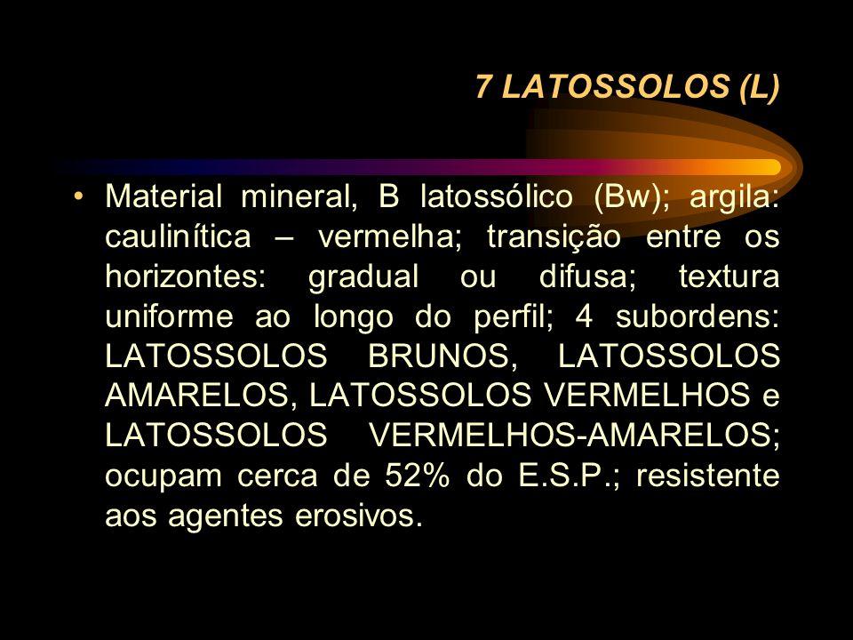 7 LATOSSOLOS (L) Material mineral, B latossólico (Bw); argila: caulinítica – vermelha; transição entre os horizontes: gradual ou difusa; textura unifo