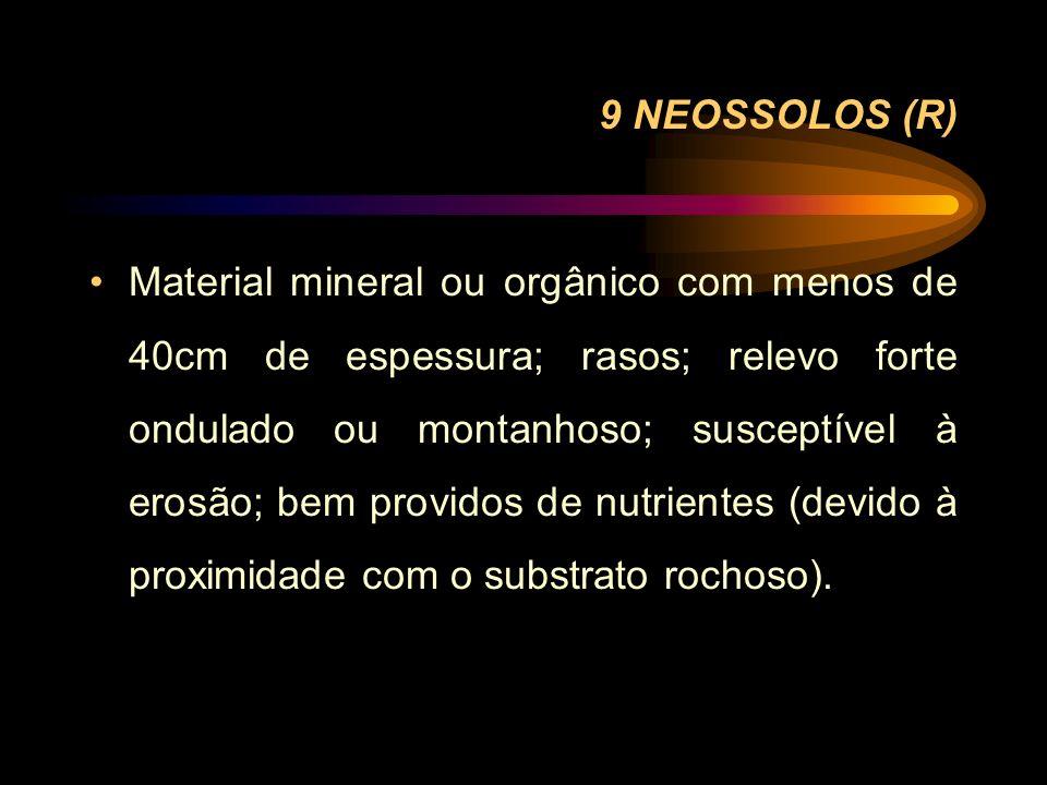 9 NEOSSOLOS (R) Material mineral ou orgânico com menos de 40cm de espessura; rasos; relevo forte ondulado ou montanhoso; susceptível à erosão; bem pro