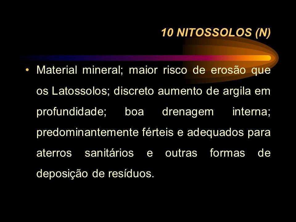 10 NITOSSOLOS (N) Material mineral; maior risco de erosão que os Latossolos; discreto aumento de argila em profundidade; boa drenagem interna; predomi