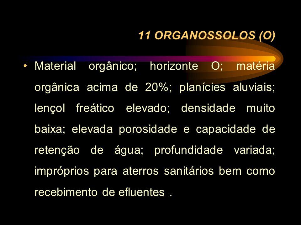 11 ORGANOSSOLOS (O) Material orgânico; horizonte O; matéria orgânica acima de 20%; planícies aluviais; lençol freático elevado; densidade muito baixa;