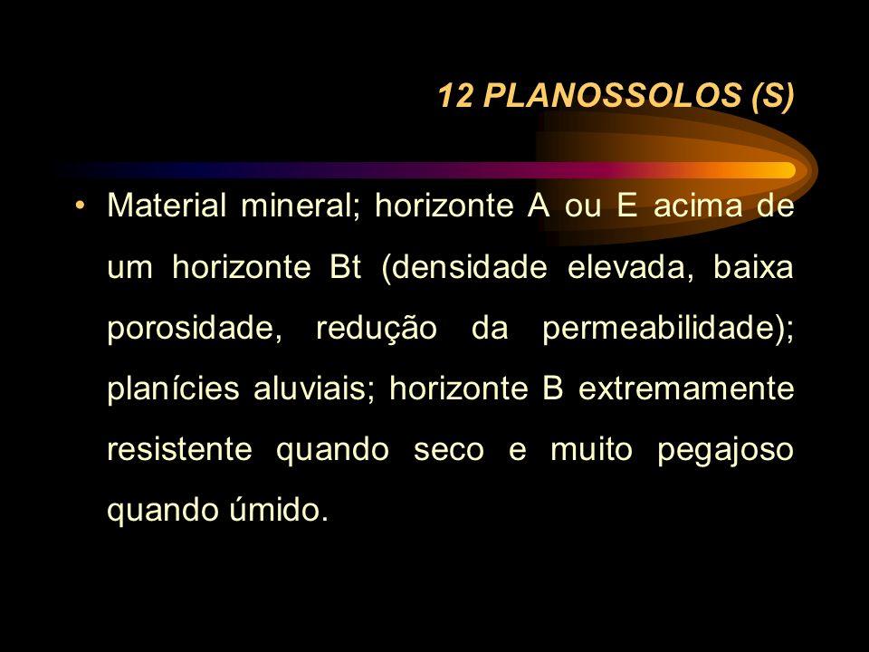 12 PLANOSSOLOS (S) Material mineral; horizonte A ou E acima de um horizonte Bt (densidade elevada, baixa porosidade, redução da permeabilidade); planí