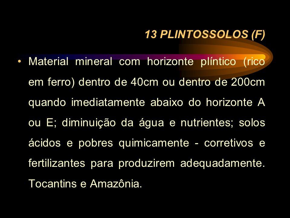 13 PLINTOSSOLOS (F) Material mineral com horizonte plíntico (rico em ferro) dentro de 40cm ou dentro de 200cm quando imediatamente abaixo do horizonte