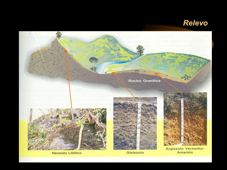 Descrição morfológica: principais propriedades físicas dos solos COR Tabela de cores de Münsell: Matiz – cor pura, ex.