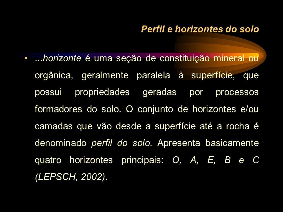 Perfil e horizontes do solo...horizonte é uma seção de constituição mineral ou orgânica, geralmente paralela à superfície, que possui propriedades ger