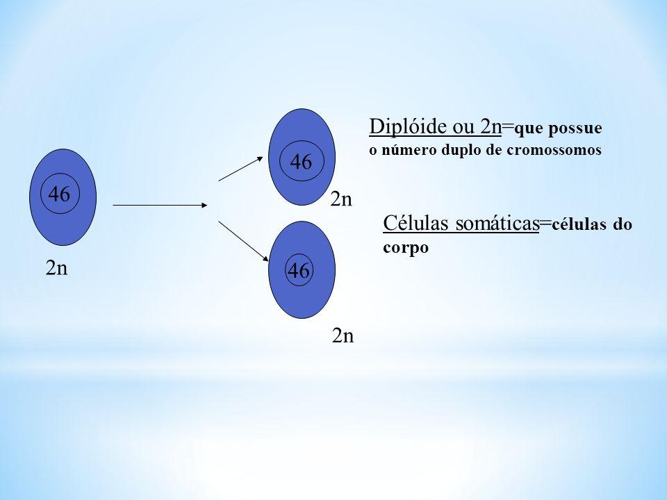 MITOSE Mitose= é um tipo de divisão celular em que uma célula diplóide da origem a duas novas células geneticamente idênticas à célula mãe.