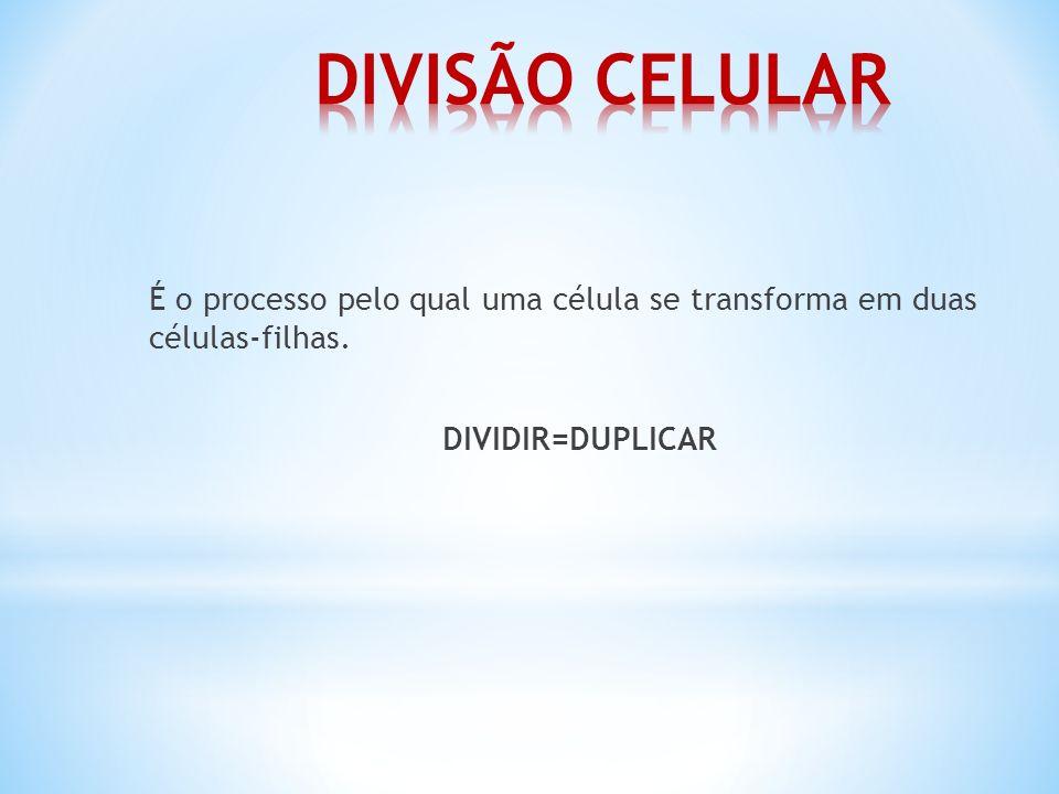É o processo pelo qual uma célula se transforma em duas células-filhas. DIVIDIR=DUPLICAR