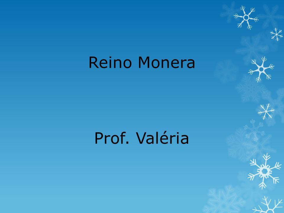 Pneumonia Streptococus pneumoniae, diplococus penumoniae, vírus, fungos e protozoários.