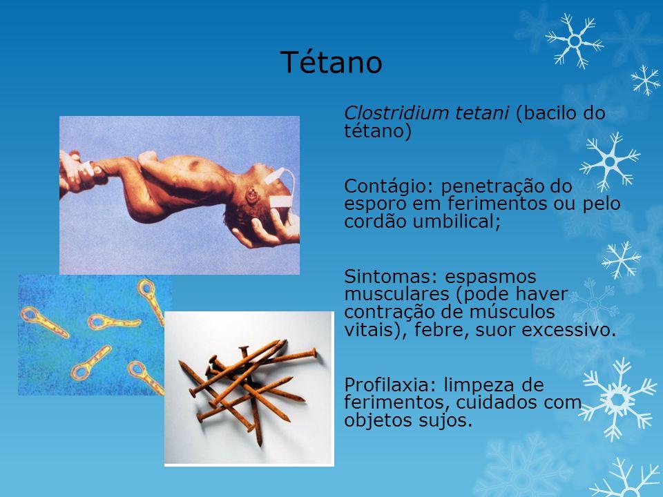 Tétano Clostridium tetani (bacilo do tétano) Contágio: penetração do esporo em ferimentos ou pelo cordão umbilical; Sintomas: espasmos musculares (pod