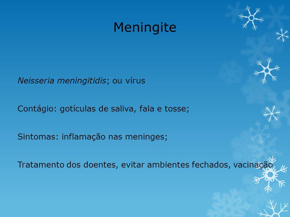 Meningite Neisseria meningitidis; ou vírus Contágio: gotículas de saliva, fala e tosse; Sintomas: inflamação nas meninges; Tratamento dos doentes, evi