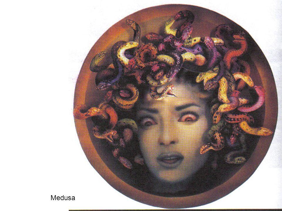 17 Medusa