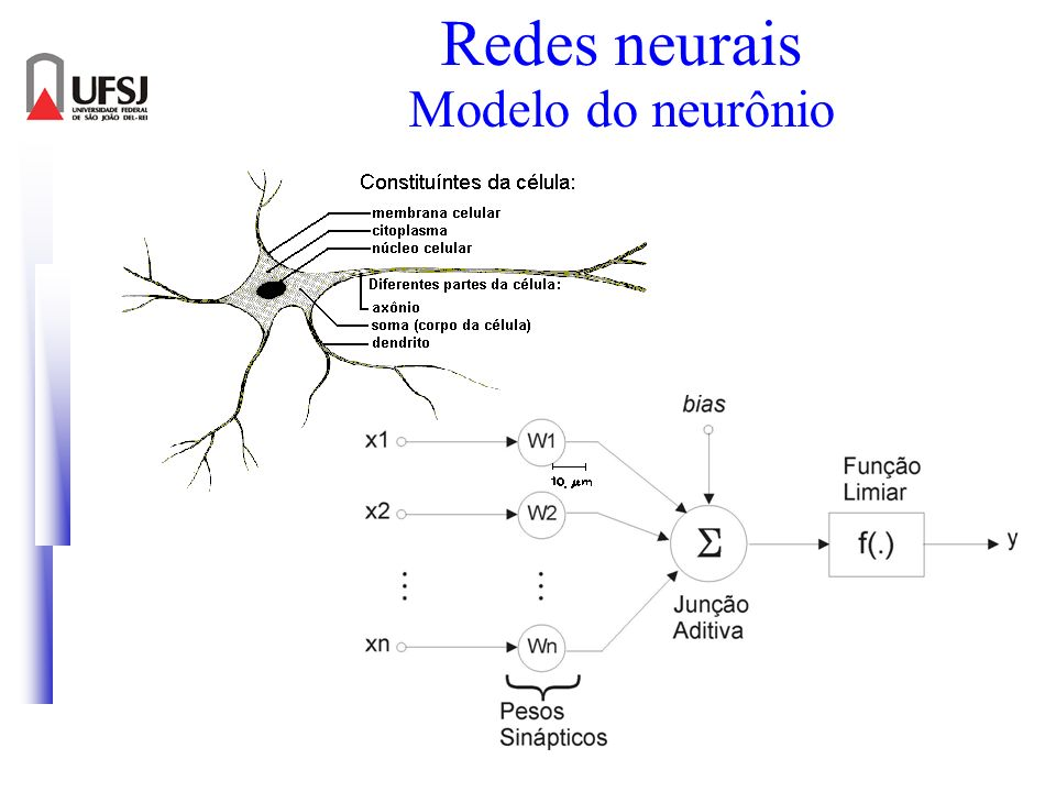 Redes neurais Modelo do neurônio