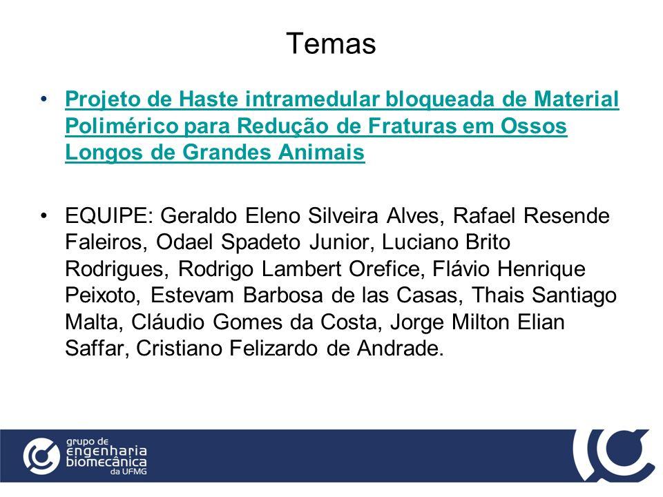 Temas Projeto de Haste intramedular bloqueada de Material Polimérico para Redução de Fraturas em Ossos Longos de Grandes AnimaisProjeto de Haste intra