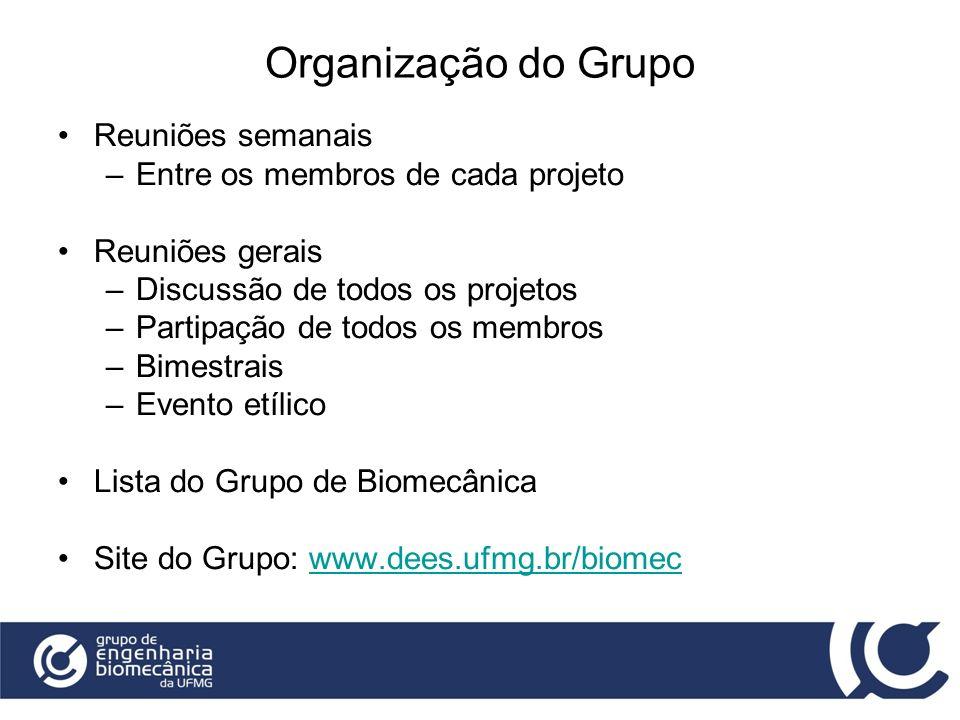Organização do Grupo Reuniões semanais –Entre os membros de cada projeto Reuniões gerais –Discussão de todos os projetos –Partipação de todos os membr