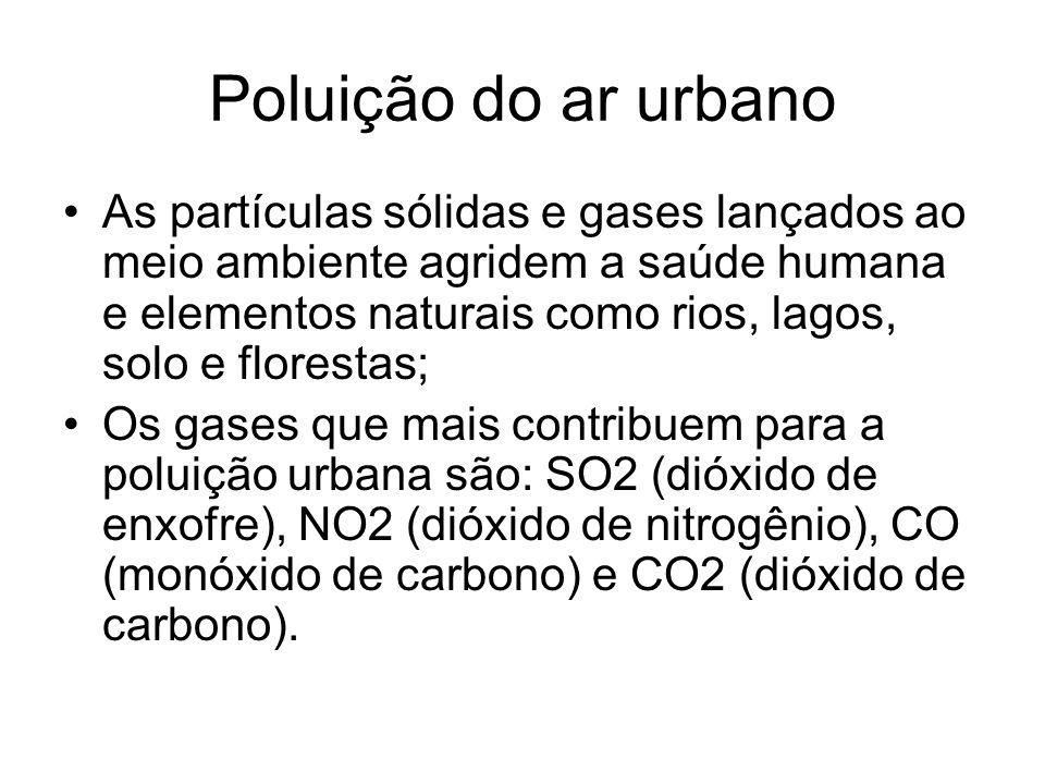 Poluição do ar urbano As partículas sólidas e gases lançados ao meio ambiente agridem a saúde humana e elementos naturais como rios, lagos, solo e flo