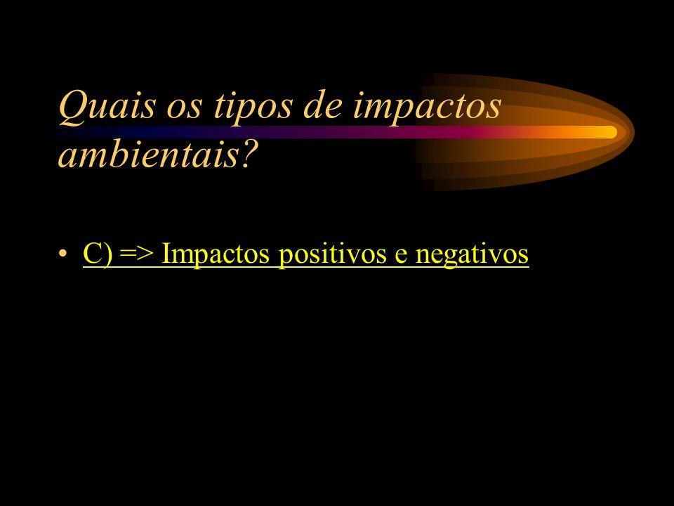 A) => Impactos divisores; B) => Impactos multiplicadores; C) => Impactos positivos e negativos; D) => Impactos destrutivos ambientais. Quais os tipos