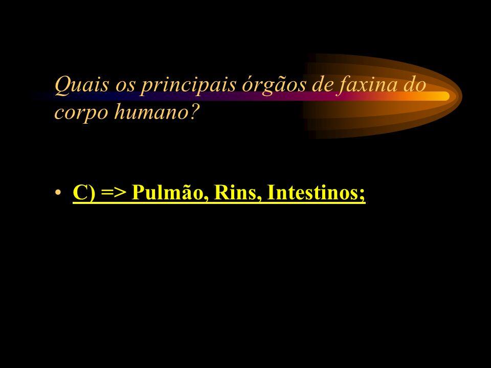 Quais os principais órgãos de faxina do corpo humano? A) => Coração, Pulmão, Rins; B) => Rins, Pulmão, Fígado; C) => Pulmão, Rins, Intestinos; D) => F