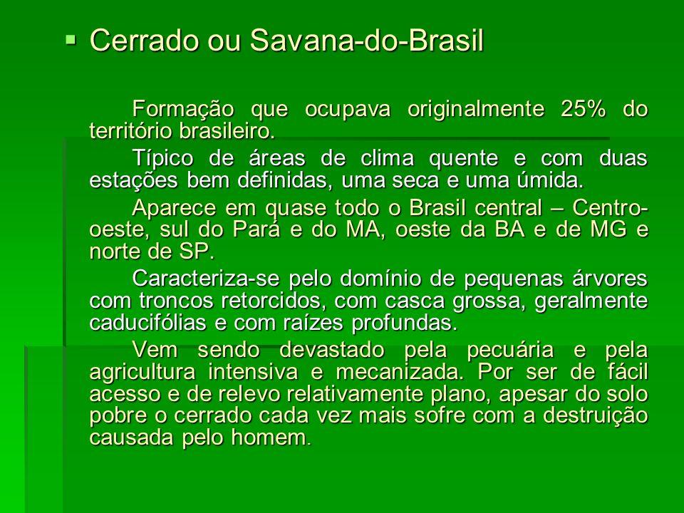 Cerrado ou Savana-do-Brasil Cerrado ou Savana-do-Brasil Formação que ocupava originalmente 25% do território brasileiro. Típico de áreas de clima quen
